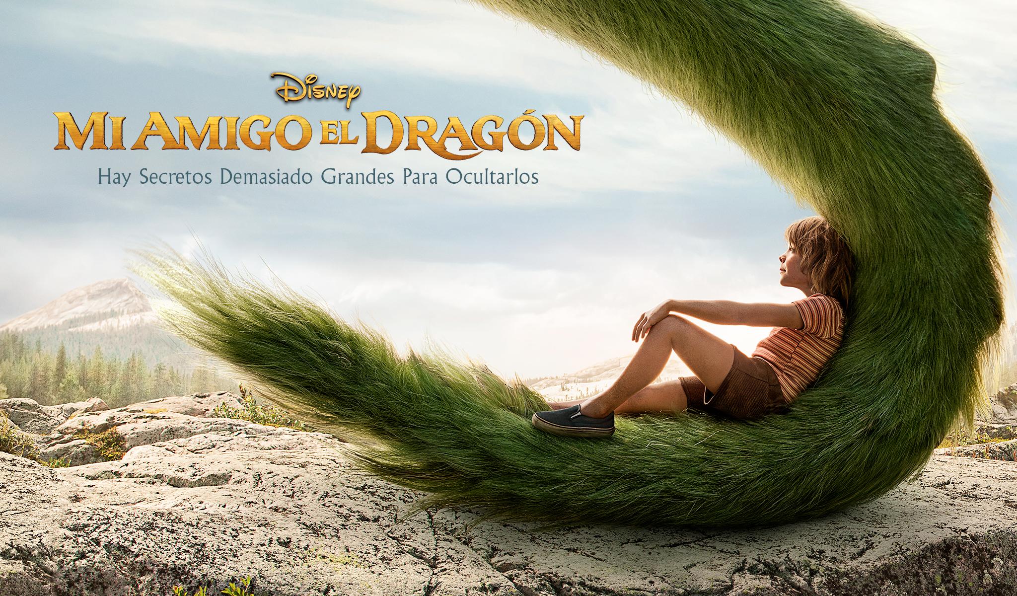 Mi amigo dragón