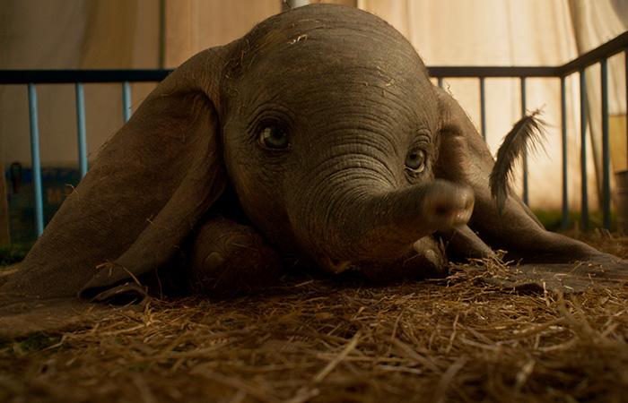 Dumbo no logra despegar.  En el remake de Tim Burton